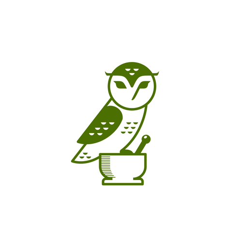 Owls Flying Clipart