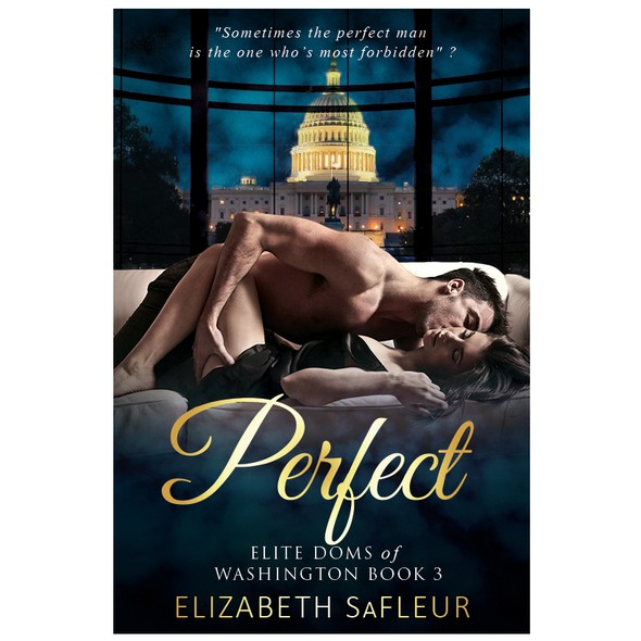Erotic book cover with the title 'Perfect'
