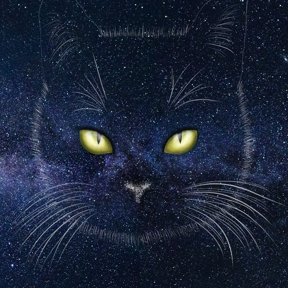 Star artwork with the title 'Drawing space cat'