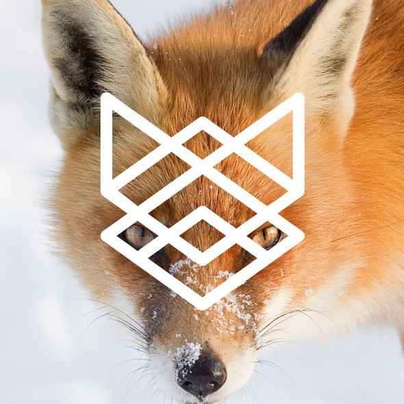 Abstract fox logo with the title 'abstract fox logo'