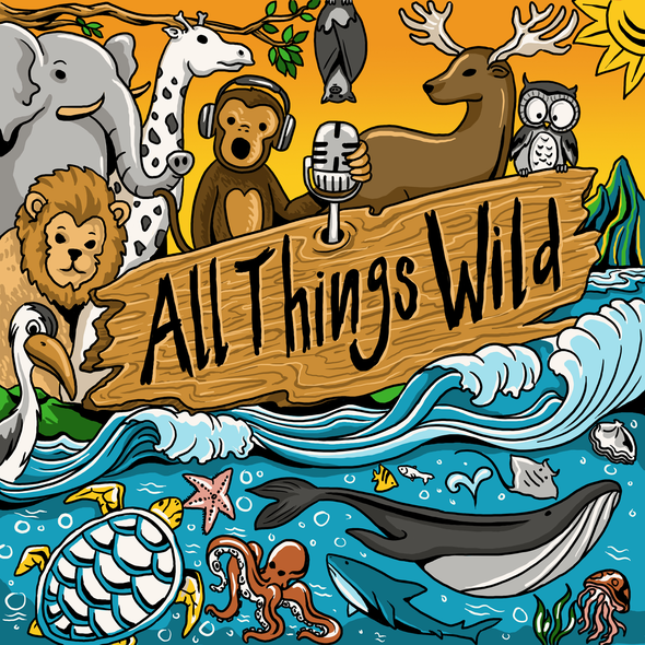 Podcast cover artwork with the title 'Illustration for Wildlife Podcast'