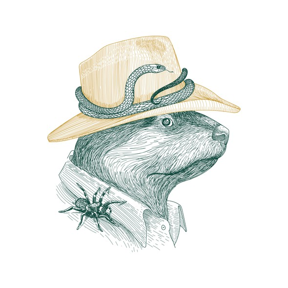Detailed illustration with the title 'Aussie Noble Otter'