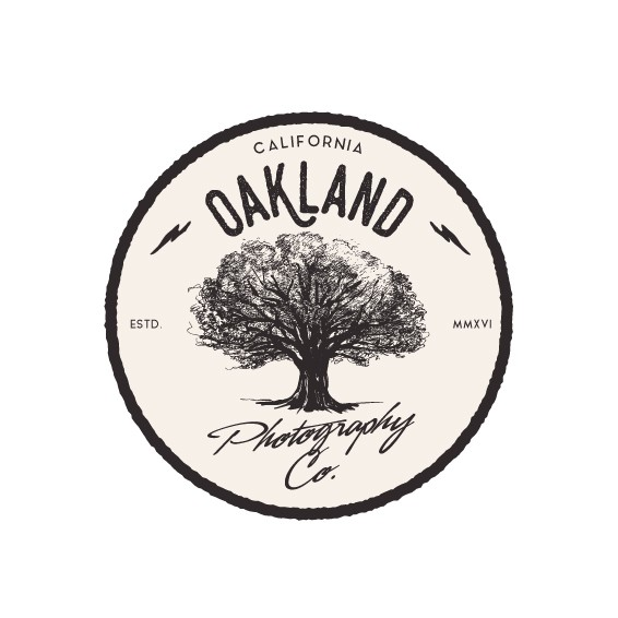 Lightning logo with the title 'Logo for Oakland photography company.'