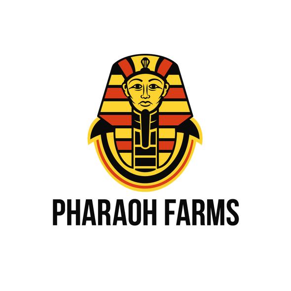 Pharaoh logo with the title 'PHARAOH FARMS LOGO'