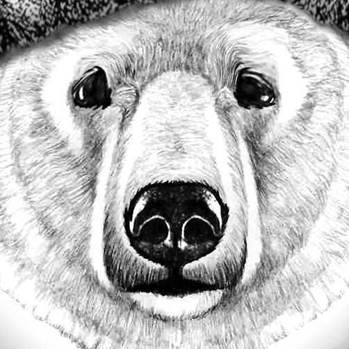 Cute animal design with the title 'Bear Tattoo'