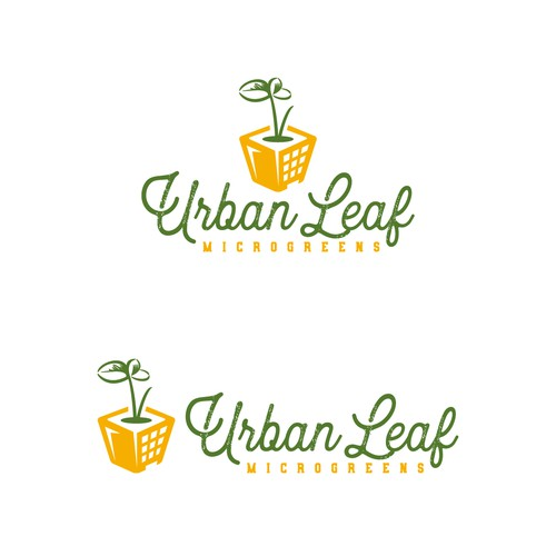 Green and yellow logo with the title 'Urban Leaf Microgreens logo'