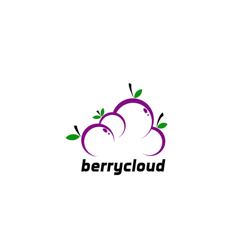 Plum design with the title 'Create a professional brand for berrycloud software'