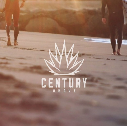 Agave design with the title 'CENTURY AGAVE - Logo/Brand Guide for new lifestyle clothing brand in Southern California'