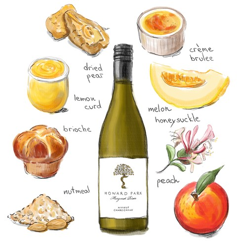 Fruit artwork with the title 'Wine descriptor illustrations'
