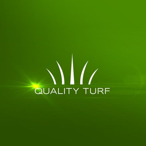 Stadium design with the title ''Quality Turf' Logo Design Concept'