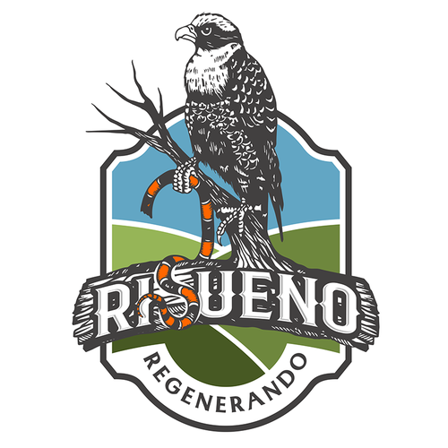 Falcon logo with the title 'Falcon with headless snake - regenerative agriculture'