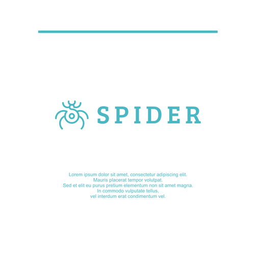 Spider logo with the title 'spider'