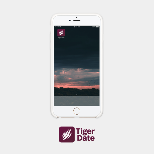 Tiger brand with the title 'Tiger Date Icon Concept'