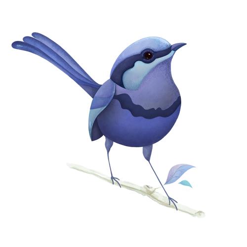 Digital art illustration with the title 'Illustration of an Australian bird'