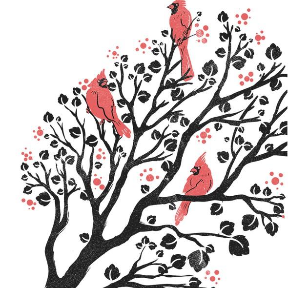 Cardinal design with the title 'Cardinals'