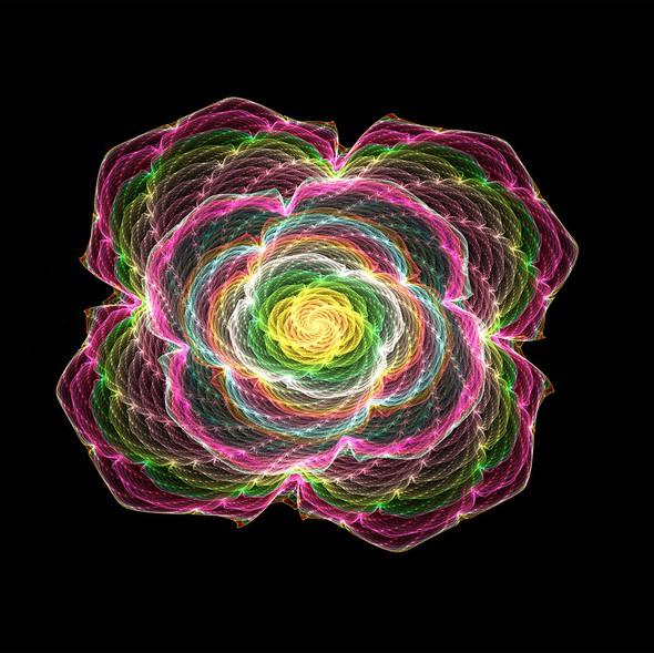 Floral artwork with the title 'fractal art- flower'