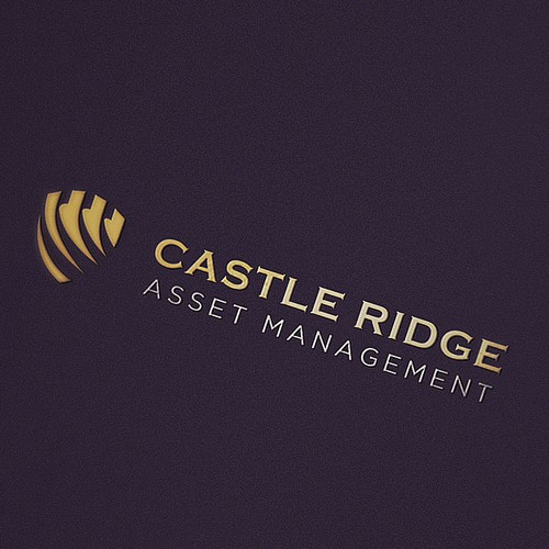 Investment design with the title 'Asset management Logo'