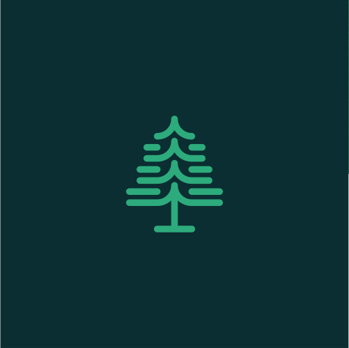 Fir tree logo with the title 'Pine Tree Abstract'