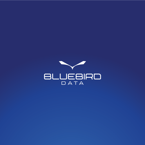 Quadcopter logo with the title 'BlueBird Data'