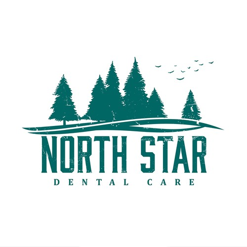 Vector art design with the title 'North Star Dental Care'