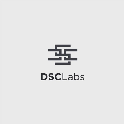 Ambigram logo with the title 'Bold logo concept for DSC Labs'