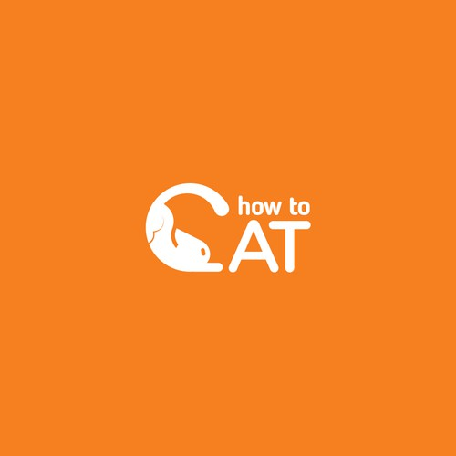 Video design with the title 'How to cat'
