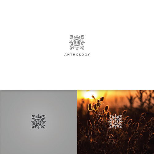 Sharp brand with the title 'Anthology logo concept'