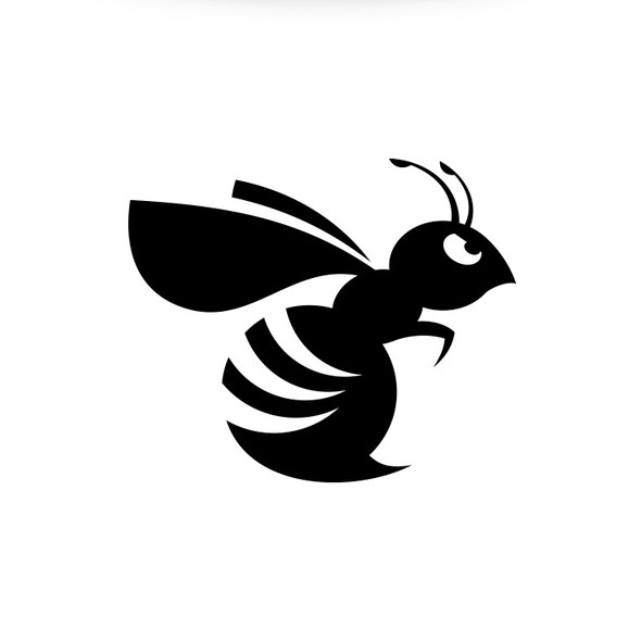 Wasp logo with the title 'Hornet Capital'