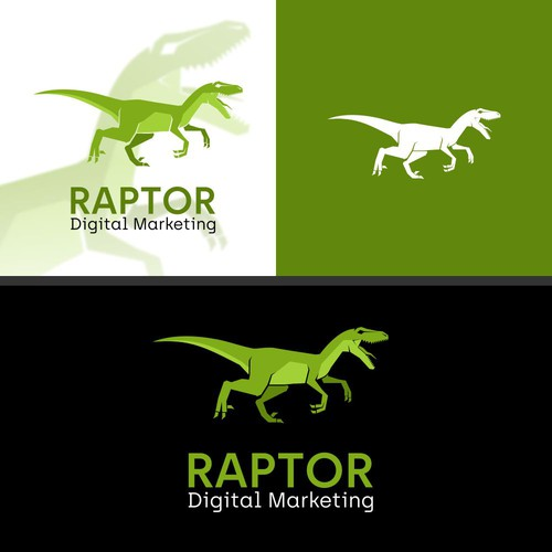 Raptor logo with the title 'Raptor'