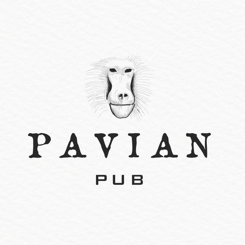Pub design with the title 'pavian pub'