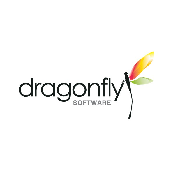 Butterfly logo with the title 'DRAGONFLY LOGO'