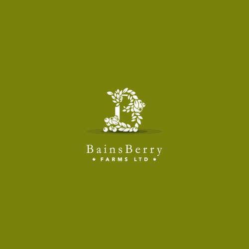 Blueberry logo with the title 'Bains Berry'