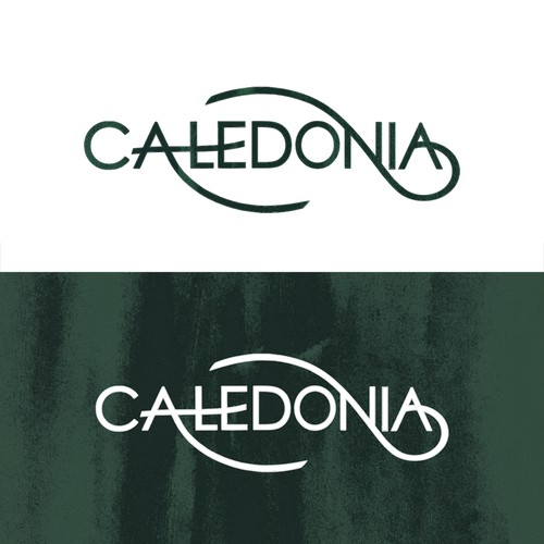 Earth brand with the title 'Caledonia Properties Logo Design'