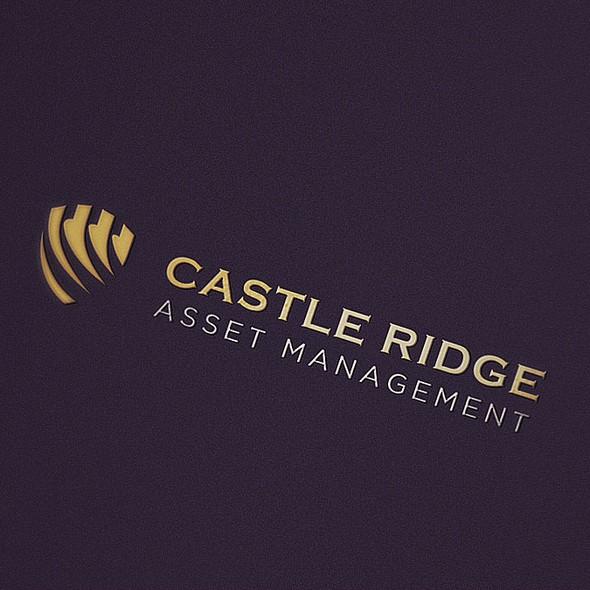 Ridge logo with the title 'Asset management Logo'