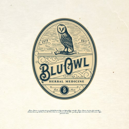 Victorian logo with the title 'BLUE OWL LOGO PROPOSAL'