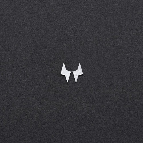 Spark logo with the title 'W A Y N E'