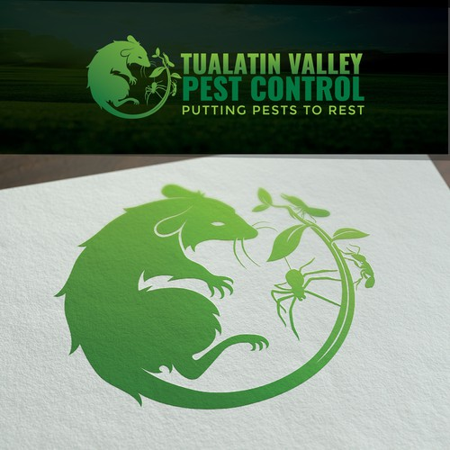 Spider logo with the title 'Pest Control'
