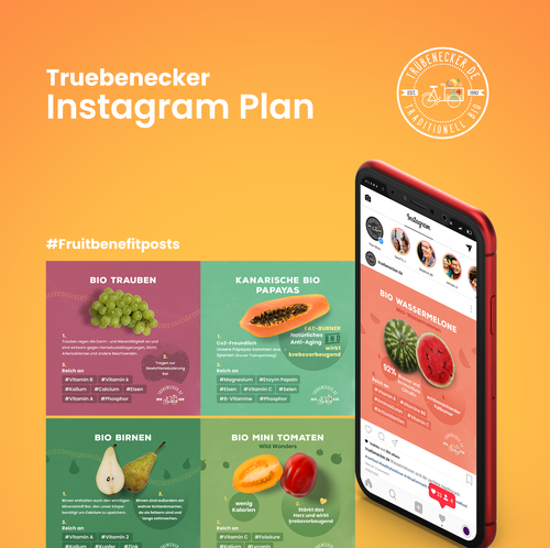 Digital marketing design with the title 'Truebenecker Instagram Plan'