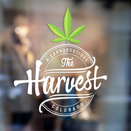 Harvest design with the title 'The Harvest'