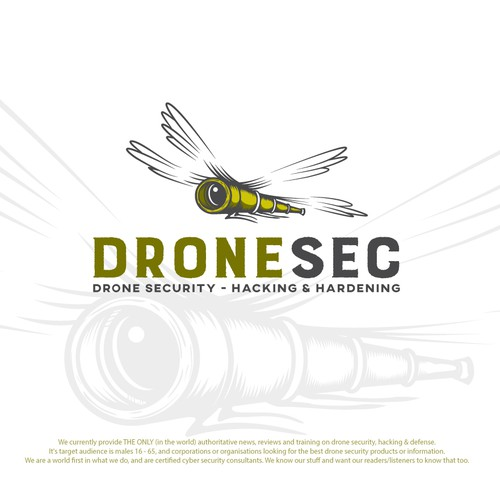 Flying logo with the title 'Dragonfly Drone Logo'