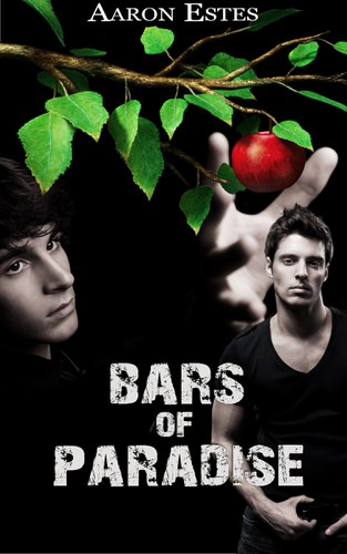 LGBT+ book cover with the title 'Bars Of Paradise Book Cover'