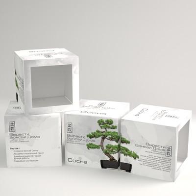 Packaging Design for Bonsai Plant