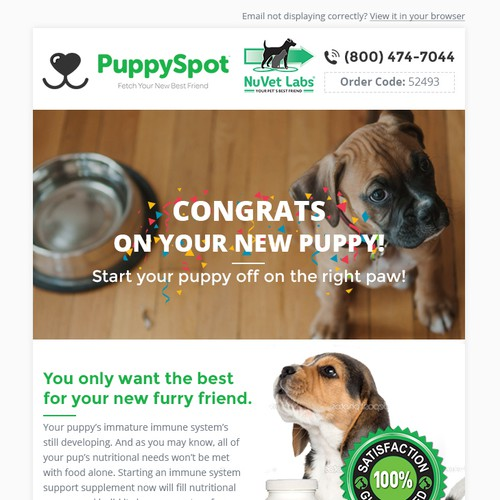Promotional design with the title 'Puppyspot'