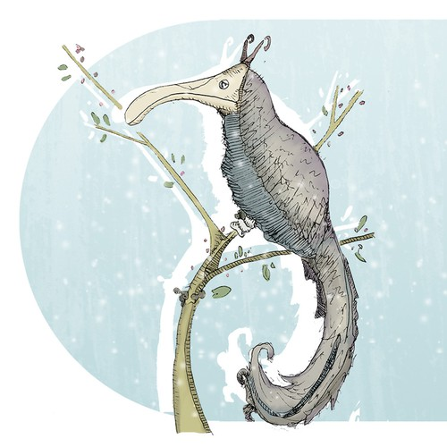 Winter illustration with the title 'Winter Bird'