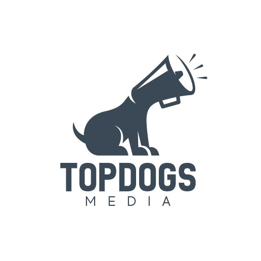 Megaphone logo with the title 'Creative logo design for a video and marketing agency'