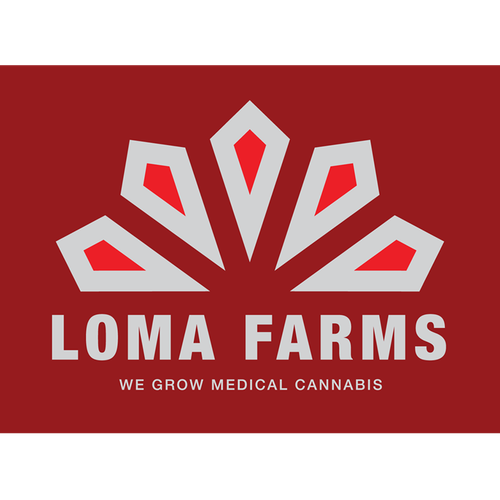 Thick line logo with the title 'Bold Logomark for a medicinal cannabis farm'