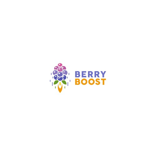 Berry logo with the title 'Concept for Berry Boost'