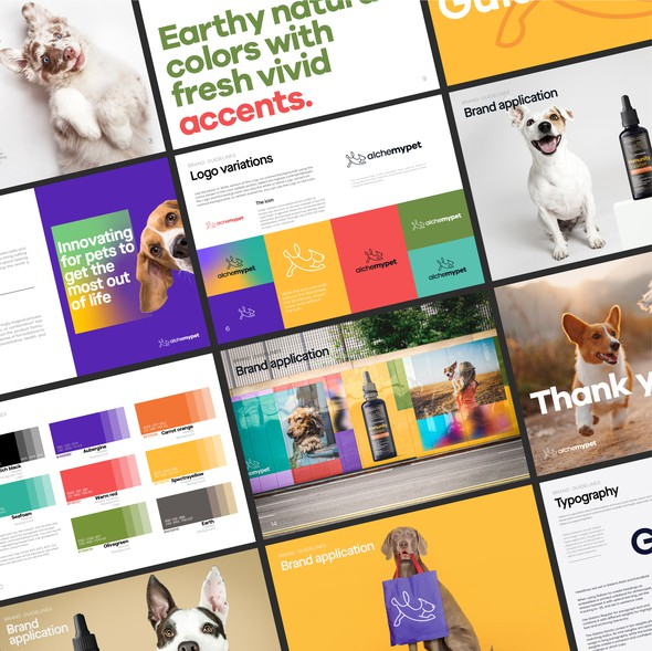 Powerful design with the title 'Alchemypet Brand Manual'