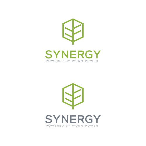 Chromatic design with the title 'Logo Synergy'