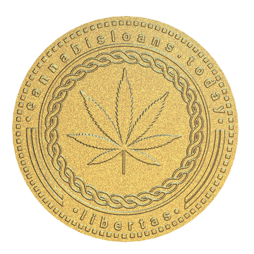 Modeling logo with the title 'Coin logo concept'